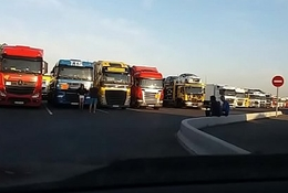 pute pose herd routier